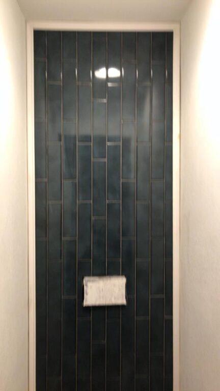 toilet area remodel